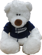 "BEARY - ""Beary"" The Barons Bear"