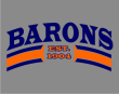 BARONS ESTABLISHED - Barons Established